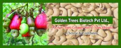 golden trees biotech pvt ltd