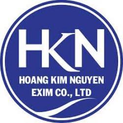 HKN EXIM COLTD