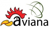 Aviana Exhibitions Inc
