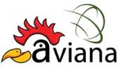 Aviana Exhibitions Inc