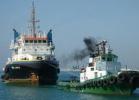 Pt. Korea Offshore Shipmanagement
